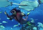 DivePackage
